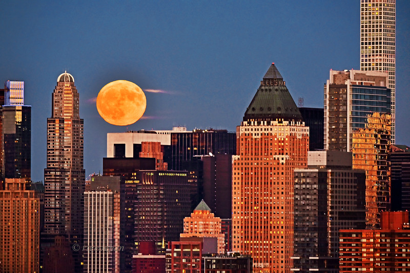 NYC Hunter Moon