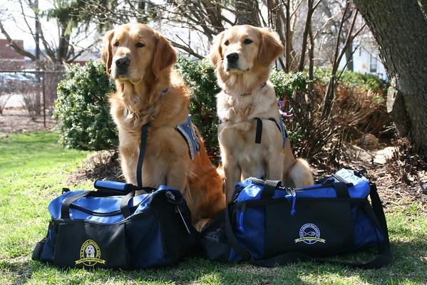2013-04 K9 Comfort Dogs in Boston