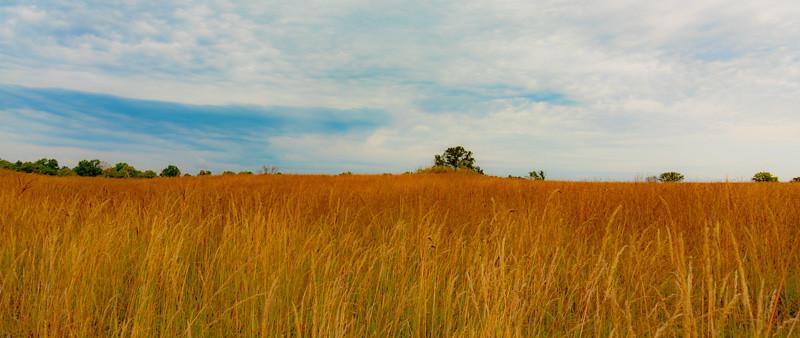 Prairie  32