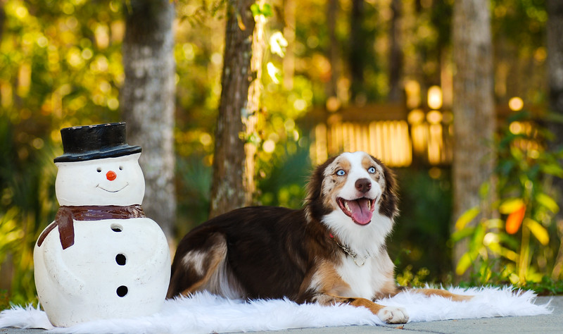 Lady sin snowman.jpg