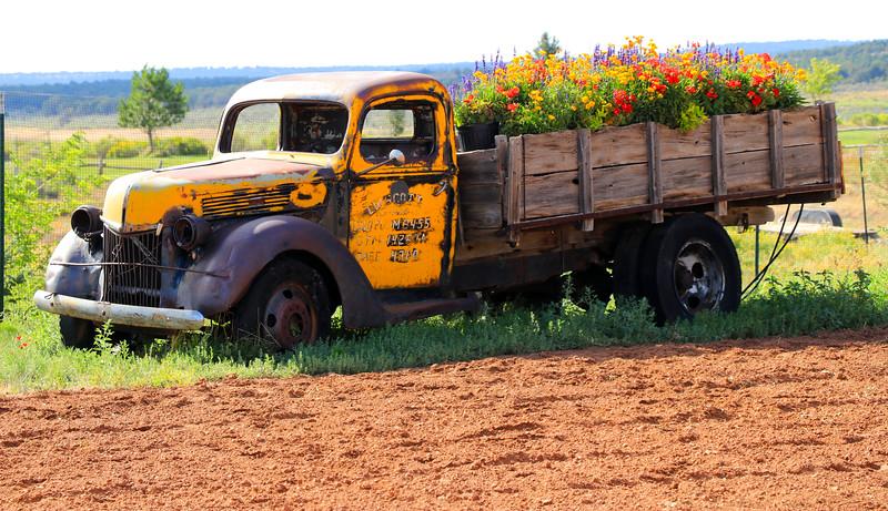 Old Truck IMG_4768.jpg