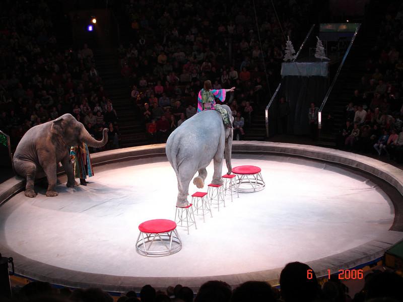 2006-01-06 Цирк с Капраловыми 37.JPG