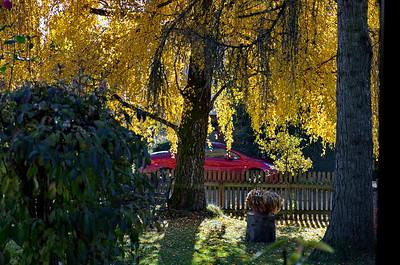 Herbst in Geisenbrunn
