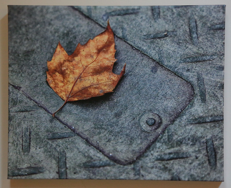 """Fallen,"" archival giclee on canvas, 16 x 20"""