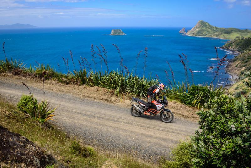 2018 KTM New Zealand Adventure Rallye - Northland (703).jpg
