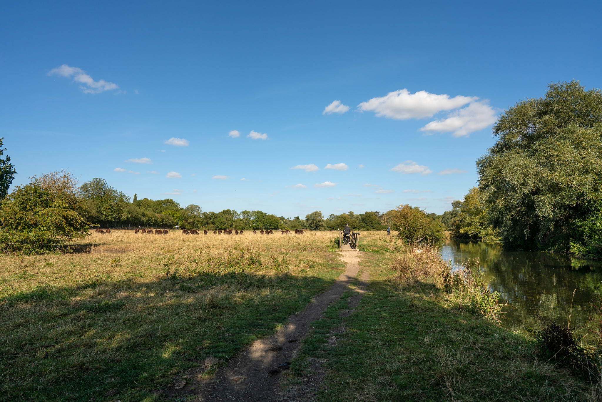 Grantchester to Cambridge Walk, Cambridgeshire