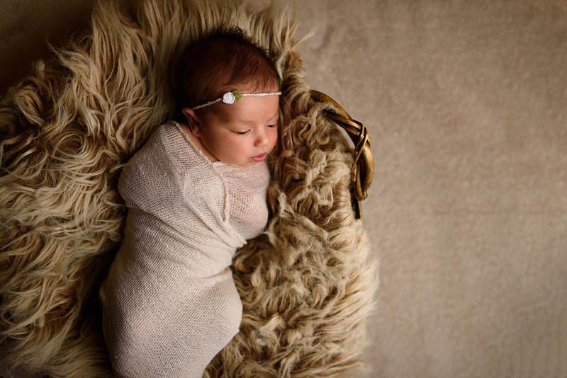 Callie Newborn - 76 - _1BT2932.jpg