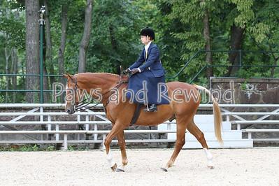 Ladies Hunter Side Saddle Under Saddle Class 2 (Sunday)