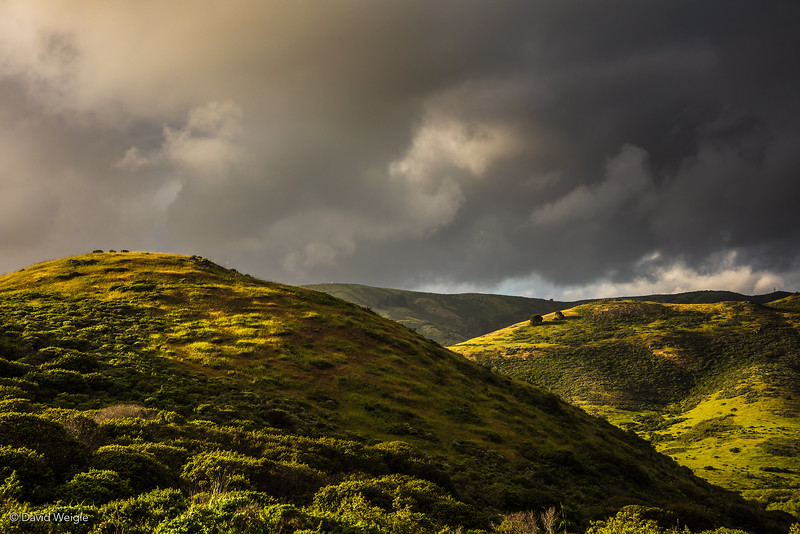 Marin Headhlands Hills #1.jpg