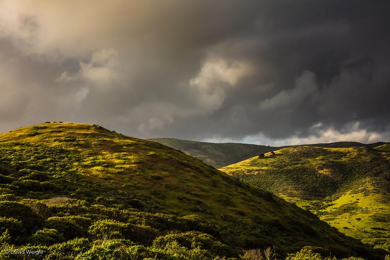 Marin Headhlands Hills #1.jpg