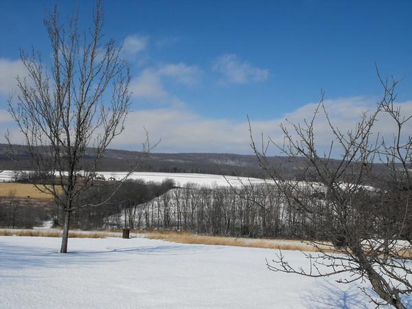 snow pics 1-30-09