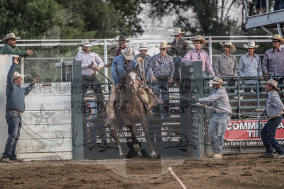 Payette Co Pro Rodeo 2018 - Friday