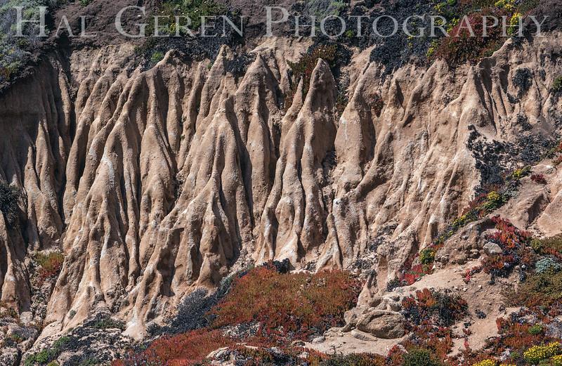 Garrapata Creek Headlands Big Sur, California 1206BS-E1