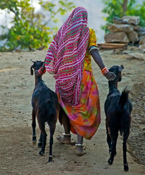INDIA2010-0213A-170A.jpg