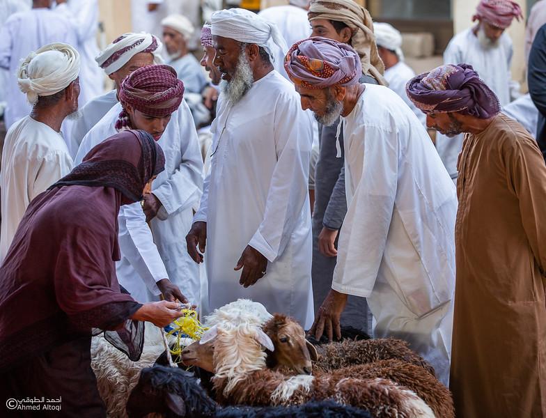 FE2A0989-Ibra- Oman.jpg