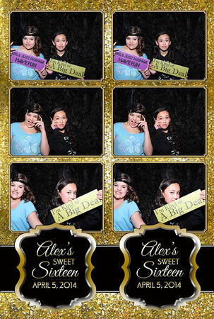 Alex's Sweet 16 Party