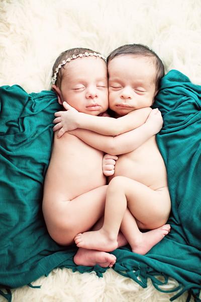twins-L+S-SP1.jpg