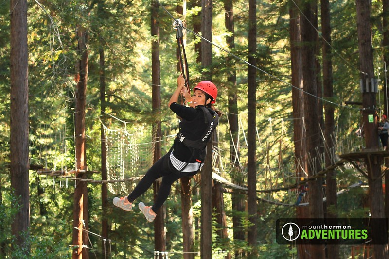 sequoiazip_1473446705011.jpg