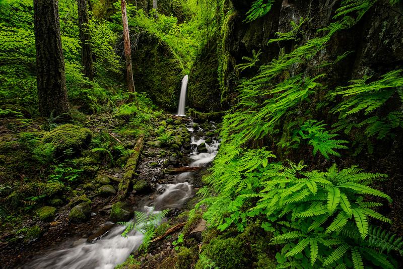 Oregon (2016-05-01)