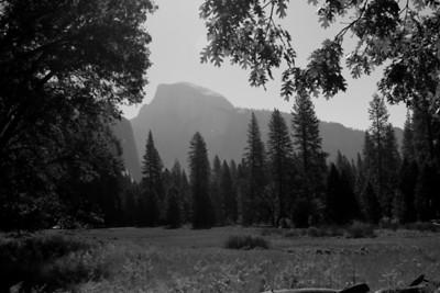 Yosemite Photographers Walk