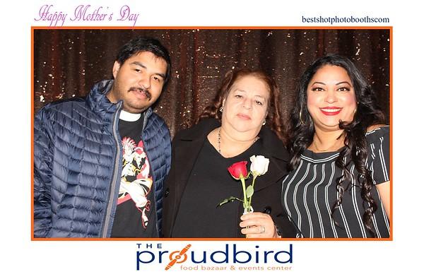THE PROUDBIRD
