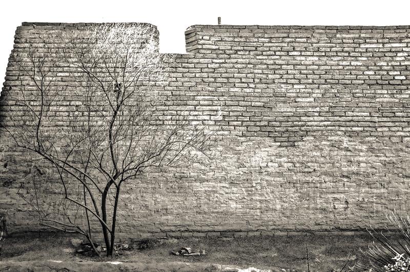 4_Presidio Wall.jpg
