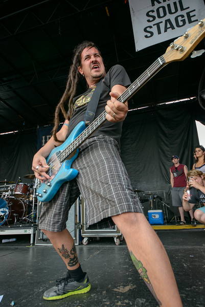 Less Than Jake - Warped 2014