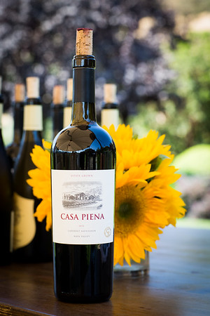 UCSF Luncheon at Casa Piena 9.9.17 (Complete Gallery)