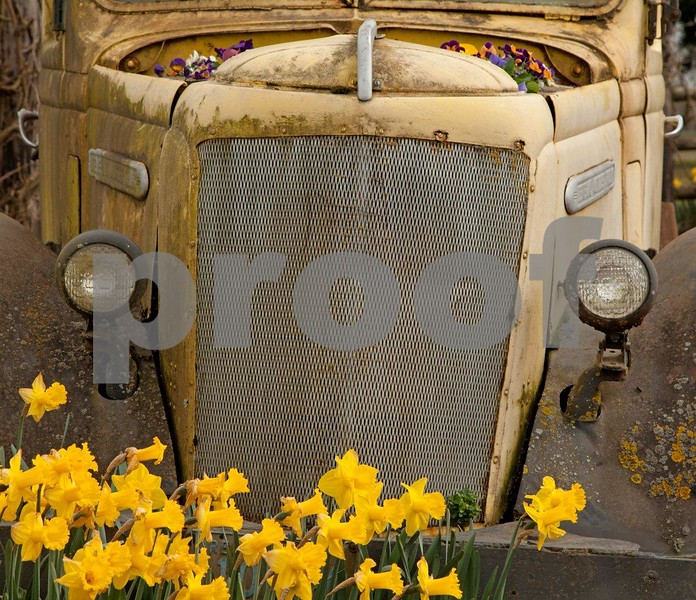 Truck grill 2952c.jpg