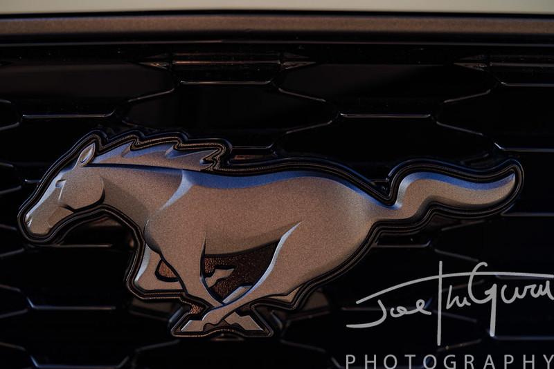 2021 Mustang Mach 1-6758.jpg