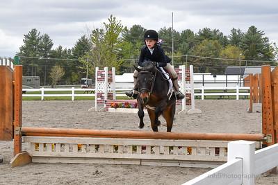 equestrian slideshow