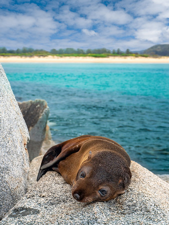 10 epic things to do on the NSW South Coast
