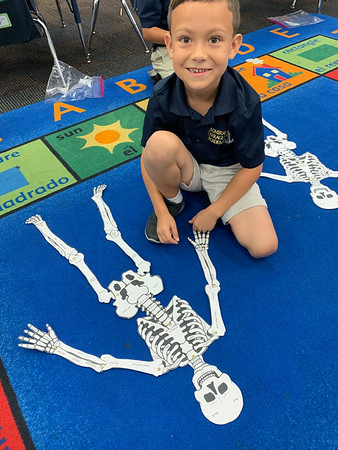 We have 206 bones that support our body!