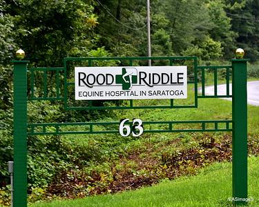 Saratoga Horse Farm Tour