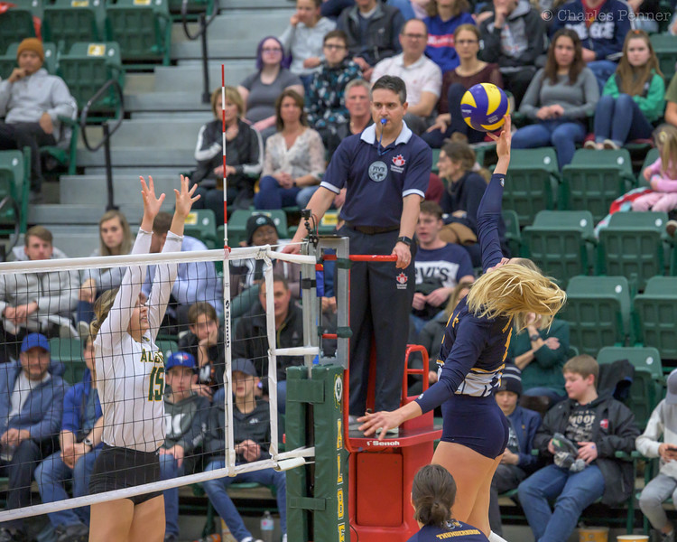 Volleyball UofA Pandas vs UBC Thunderbirds