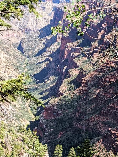 2019 Grand Canyon-377.jpg