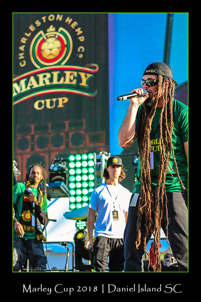 THE MARLEY CUP