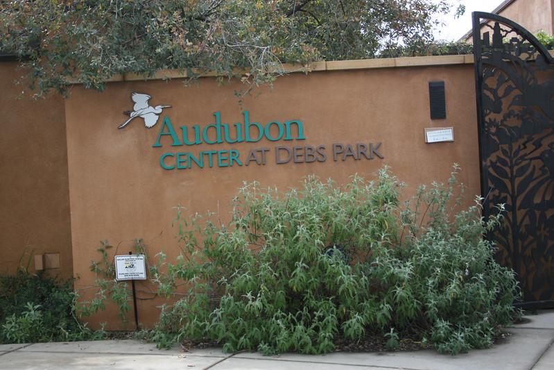 Eco Interns - Audobon Center Debs Park