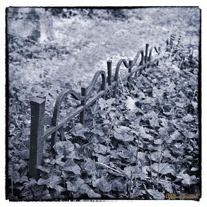 Židovský hřbitov Blovice