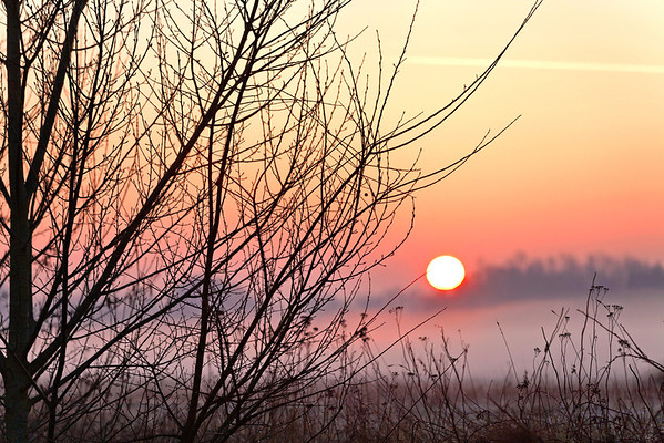 Lever de soleil - matin brumeux