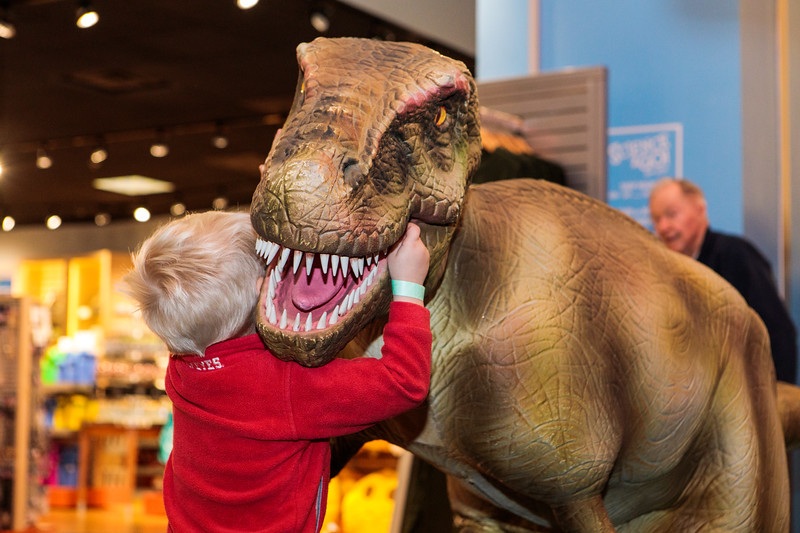 COSI-Dinosaurs-Exhibit-80.jpg