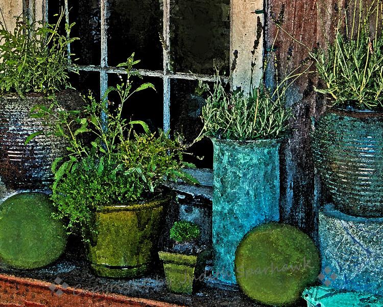 Window at Los Rios - Judith Sparhawk