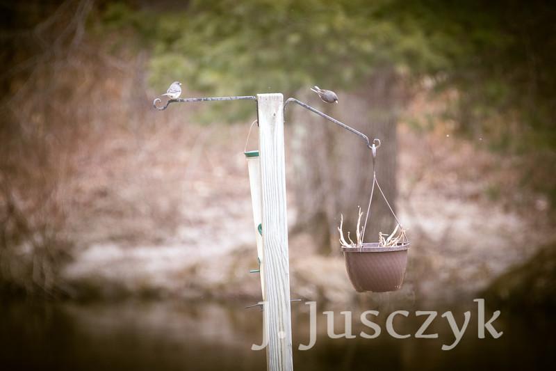 Jusczyk2021-5914.jpg