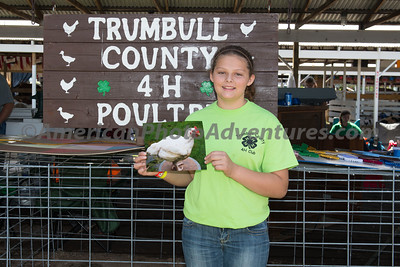 July 16 Poultry Judging