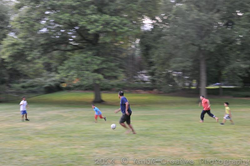 2014-08-31_BarBQCampfire@ArthiSivaHomeScotchPlainsNJ_04.jpg
