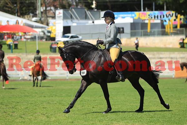 2014 09 26 Perth Royal Show Novice Show Hunter Galloway