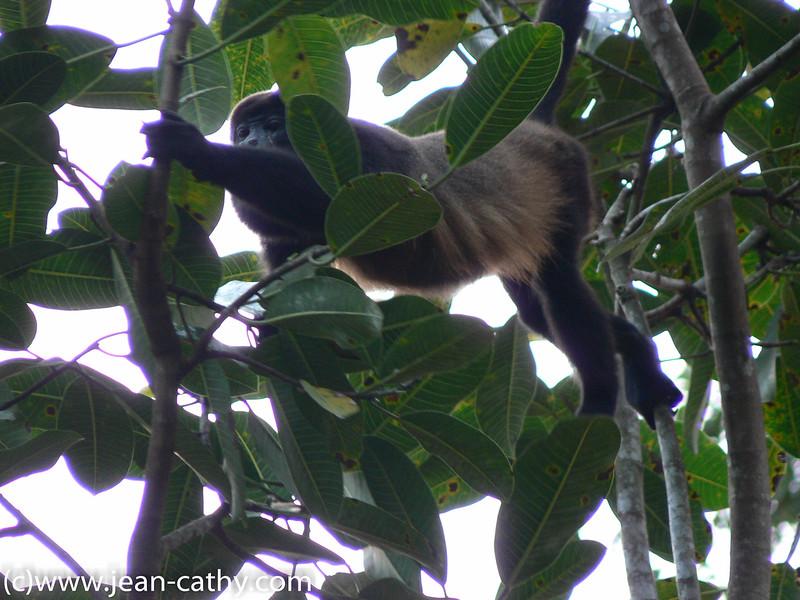 Costa Rica 2007_ (42 of 85)