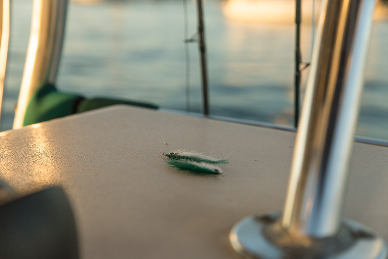 flyfishingnewengland.westportfall15-4.jpg