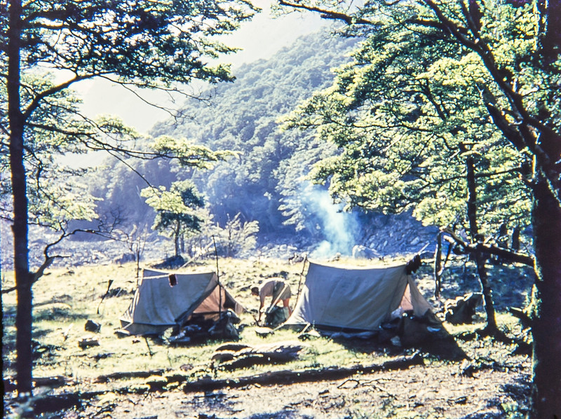 1955 camping in the Hopkins River.jpg