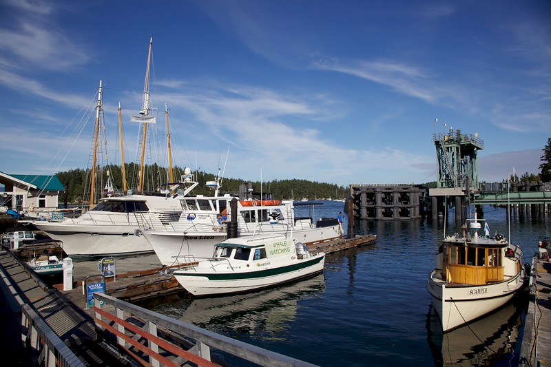 Boats at dock. Friday Harbor, San Juan Island, Washington.